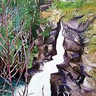 'Linville Falls' by Jerry Kirk