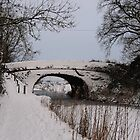 Grand Western Canal, Battens Bridge in the snow by Rob Hawkins