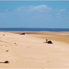 MOZAMBIQUE'S  WHITE SANDY BEACHES, AT LOW TIDE by Magaret Meintjes