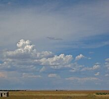 Small Shed - Nebraska Landscape by Nina Brandin