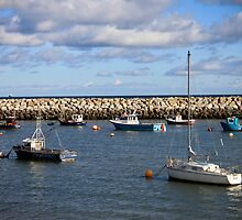 Harbour on a Summers Day  by Selina Ryles
