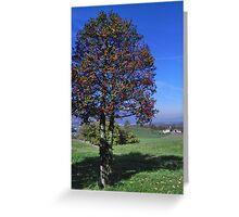Holly Tree Greeting Card