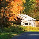 Along the Country Road by Geno Rugh