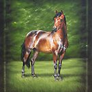 Art of the Horse by Heidi Schwandt Garner
