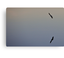 Flying Double Canvas Print