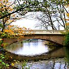 Stanley Park Bridge In Autumn by Sandra Cockayne