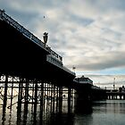 Palace Pier Brighton by NadineBurzler