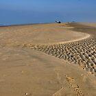 Autumn holidays on the North Sea beach by Adri  Padmos