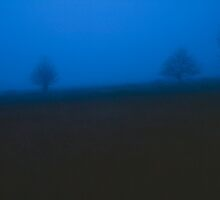 Nightfall on the moor - High Venn / Hautes Fagnes, Belgium by intensivelight