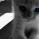 Young Cat's Eyes by Bree Longberry