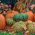 Pumpkin Stand by Ned Elliott
