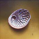 Abalone shell #1 by Elena Kolotusha