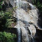 Waterfall @ Maymount Park, Richmond Virginia by Betty Maxey