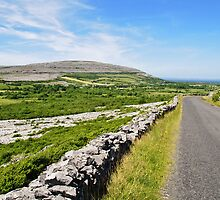 The Burren National Park, County Clare, Ireland by upthebanner
