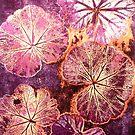 """October's Garden - Monoprint by Belinda """"BillyLee"""" NYE (Printmaker)"""