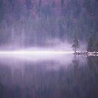 Mist over the lake by intensivelight