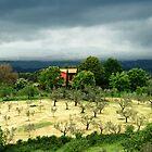 Storm Over Monterosi-Italy by Deborah Downes