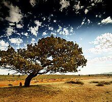 South Australia landscape serie 05 by ZoltanBalogh