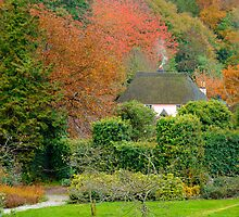 Autumn at Cockington by rodsfotos