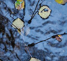 Autumn water abstract 1 by intensivelight