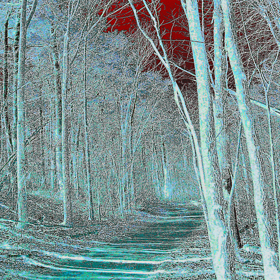 Blue forest walk by linmarie
