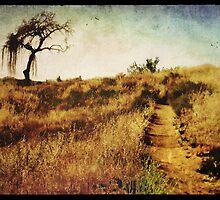 The Secret Pathway To Aspiration by Brett Pfister