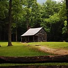 Cades Cove Settlers Cabin by Shane Jones