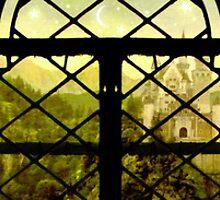 The Window by Brett Pfister