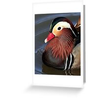 "Who""s A Pretty Boy Greeting Card"