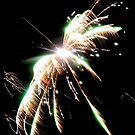 Fireworks by Roxy J