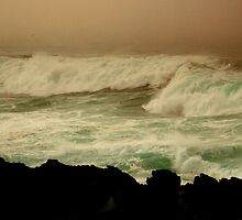 From McKerricher State Park, Mendocino Coast, N. California by Ascender Photography