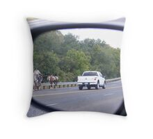 Slow  way to get home! Throw Pillow