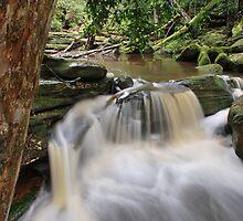 Somersby Falls,6-11-10, no2 by Warren  Patten