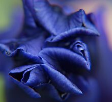 a blue tomorrow... by byzantinehalo