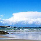Madfish Beach - Denmark by Andy and Von Quinn