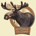 Northern Exposure by Satta van Daal