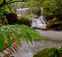 Somersby Falls 6-11-10 (long shot). by Warren  Patten