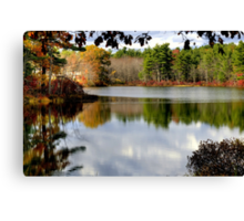 Reflections of the Seasons Canvas Print