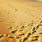 Footprints on The Dunes by Katie Cornelison