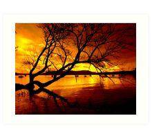 """THE TREE ON THE LAKE"" Art Print"