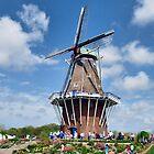 Die Schwaan Windmill by Usha Ganesh
