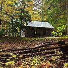Little Greenbrier School House by Phillip M. Burrow