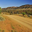 Road Through The Ranges by Terry Everson