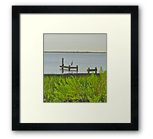 Cranefish Framed Print