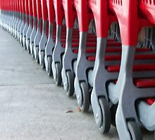 Waiting Shopping Carts by jerryannjinnett