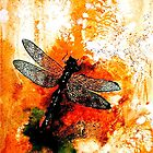 The Nature of Things...Insects....The Dragonfly by  Janis Zroback