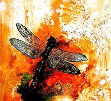 The Nature of Things...Insects....The Dragonfly by © Janis Zroback