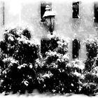 Let It Snow!!!  ©  by Dawn M. Becker