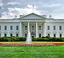 The White House  by Clyde  Smith