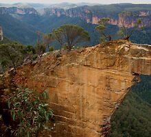 Hanging Rock, Blackheath by Michael Vickery